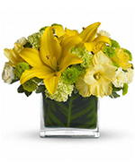 Oh Happy Day by Teleflora